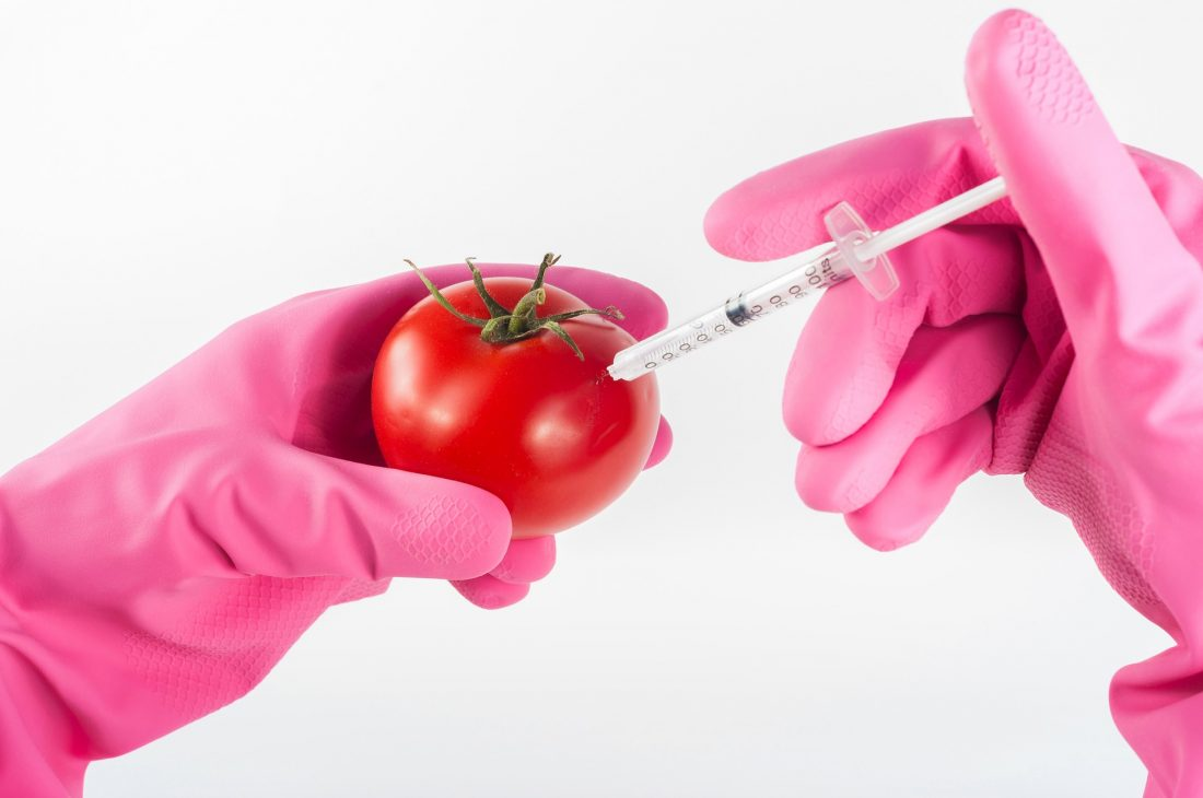 GMO in Food